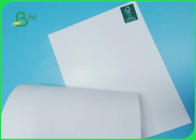 250 / 300gsm FSC certified good printing glossy Folding box board in roll